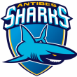 Match ANTIBES SHARKS - BORDEAUX @ Stade Foch - Billets & Places