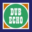 Soirée DUB ECHO #11 : WELCOME DUBQUAKE !