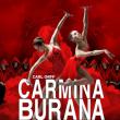Spectacle Carmina Burana à Grenoble @ SUMMUM - ALPEXPO - Billets & Places